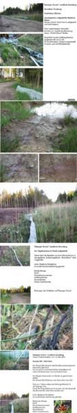Bernried /Tutzing - Schlamperei an der Natur